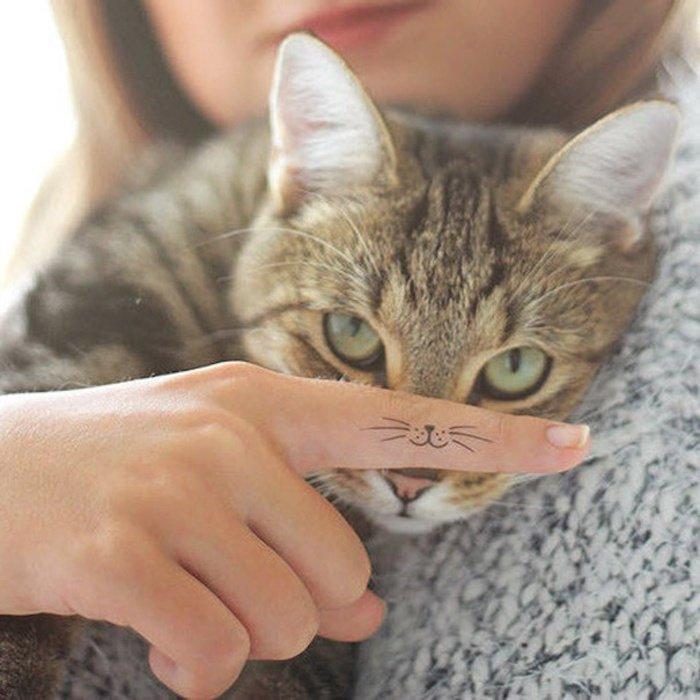 hier ist noch eine graue katze mit grünen augen und eine hand mit finger mit einem katzen tattoo
