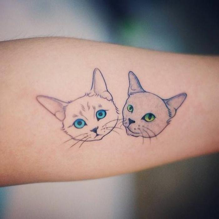 diese idee für zweil kleine katzen tattoos könnte ihnen sehr gut gefallen - hier sind zwei kleine katzen - eine katze mit blauen augen und eine katze mit grünen augen