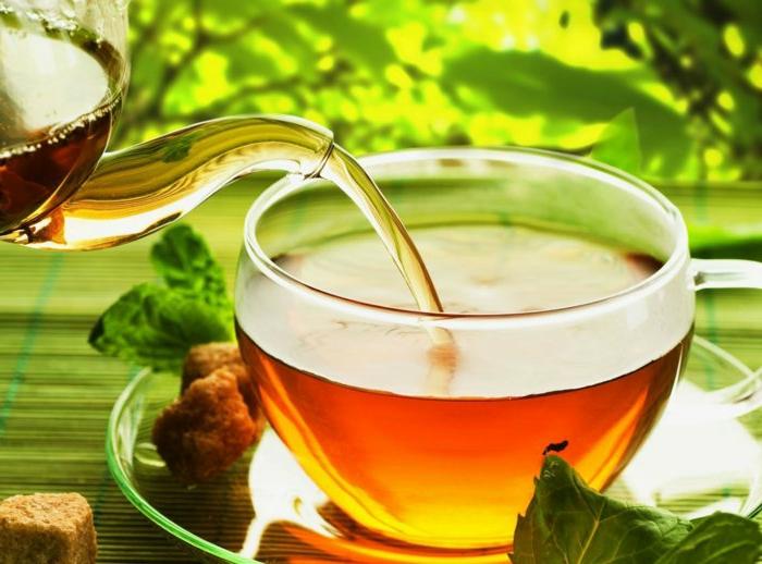 natürliche appetitzügler matcha tee matcha rezepte grüner tee aus der kanne in einer tasse gießen gesunde gewohnheiten