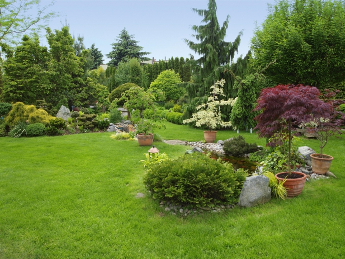 vier Blumentöpfe mit Zierbäume, Steingarten, englischer Garten - Vorgarten pflegeleicht gestalten