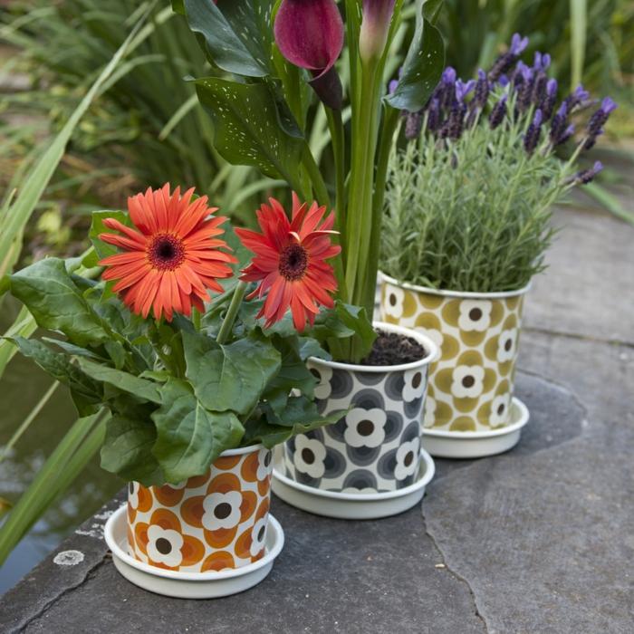drei Blumentöpfe in verschiedenen Farben mit Blumen Muster mit verschiedene Blumensorten - Gartenbeete gestalten