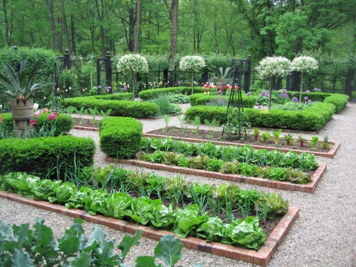 Gartenbeete gestalten - mit Zwiebel, Salat Blumen und Hecke, Ständer für Kletterpflanzen