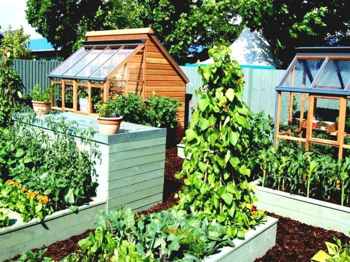 zwei Treibhäuser Blumentöpfe Gemüse und Blumen Gartengestaltung pflegeleicht