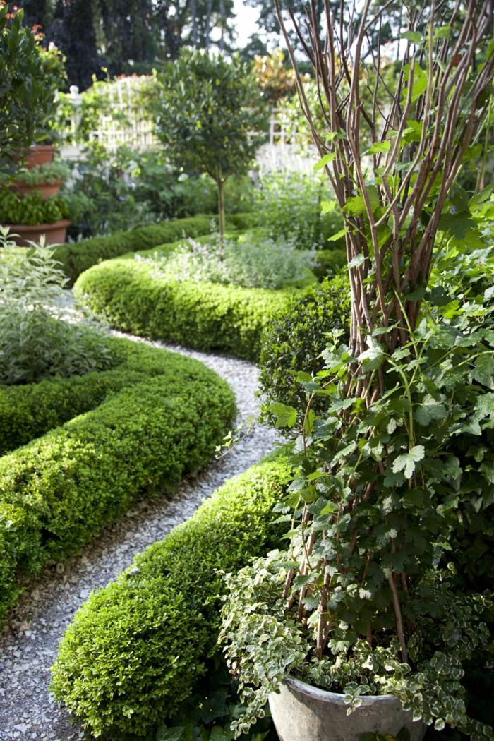 ein Pfad von Kies mit Hecke umgeben ein Zierstrauch - Vorgarten pflegeleicht gestalten