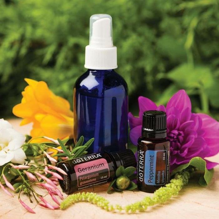 raumspray selber machen, blaue flasche, ätherische öle, blumen, pflanzen