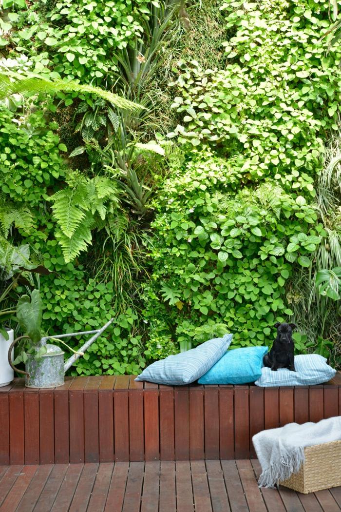 Garten pflegeleicht vertikaler Garten eine grüne Wand eine Bank aus Bretten