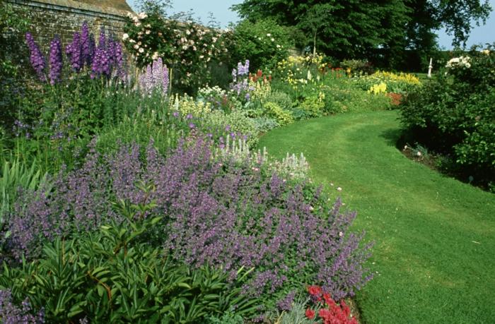 Lavendel Garten Ein Rasen Als Pfad Viele Blumen Einen Garten Pflegeleicht  Gestalten