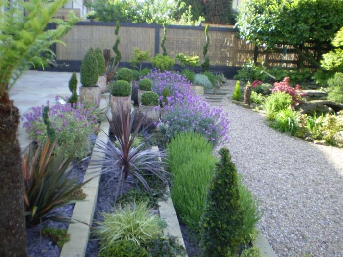 Lavendel Garten pflegeleicht viele verschiedene Pflanzensorten in Reihen geordnet