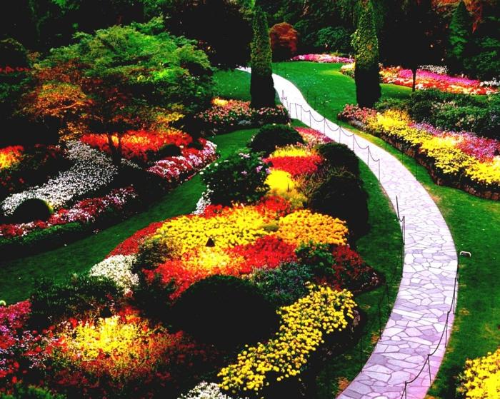 prächtige Blüte wie Feuer so strahlend kleinen Pfad mit Steinen - Garten pflegeleicht