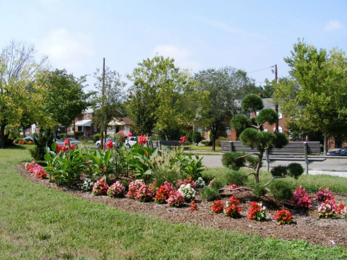 ein Garten pflegeleicht auf dem Fußweg mit einem schönen Zierbaum