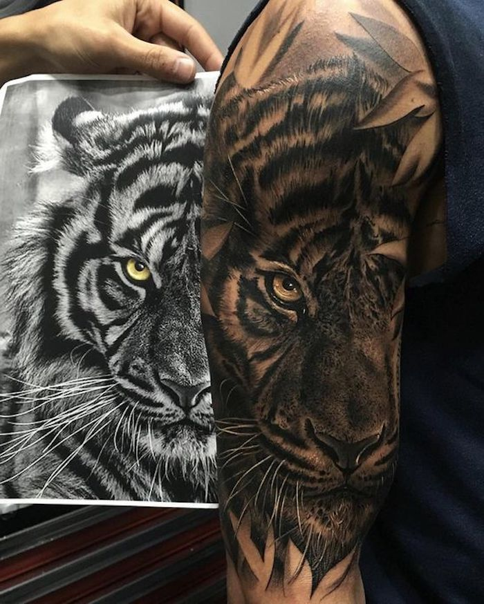 tiger tattoo, shwarz-weiße zeichnung, oberarmtattoo, tätowierung