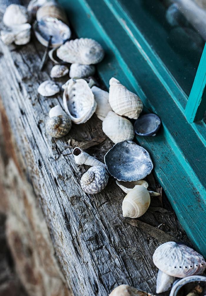 Fensterbank aus Holz draußen Dekoideen mit Muscheln und Schneckenhäuser