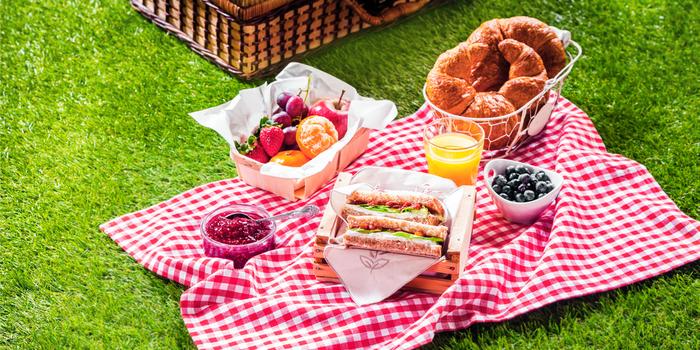 Im eigenen Garten Picknick machen, einen sonnigen Tag außen genießen