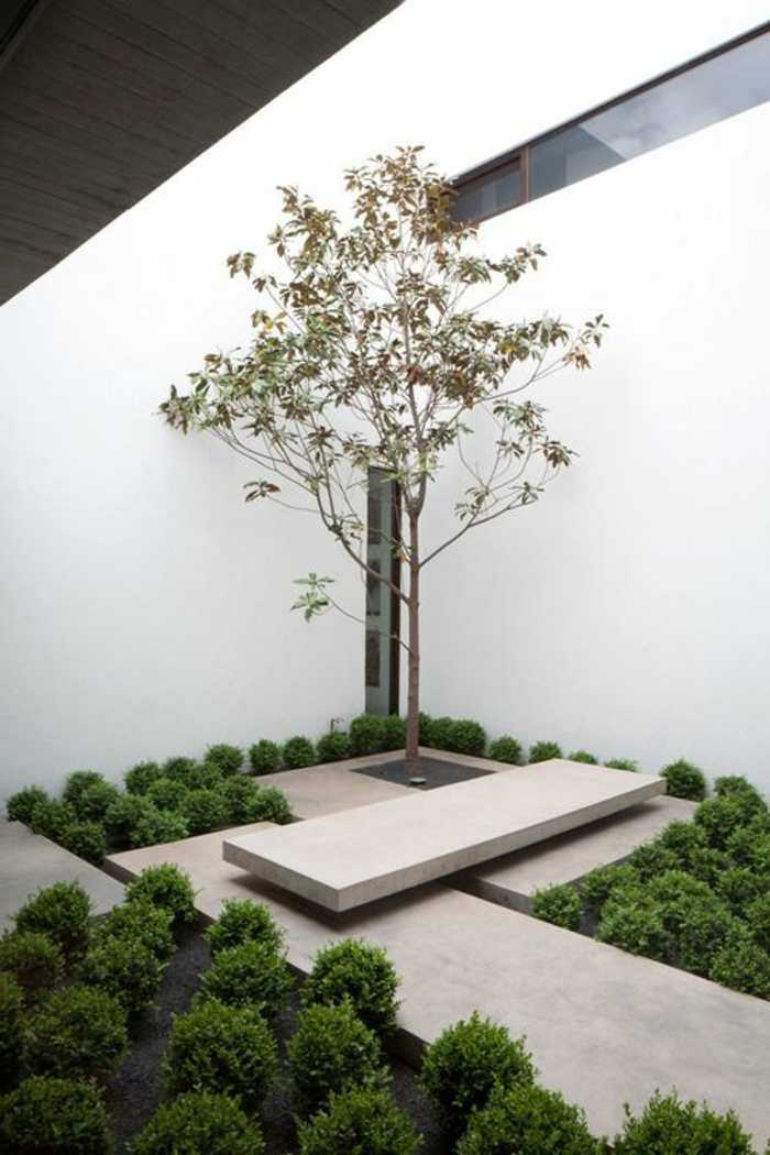 ein einsamer Baum in einem minimalistischen Garten gepflanzt mit viele grüne Sträucher umgeben
