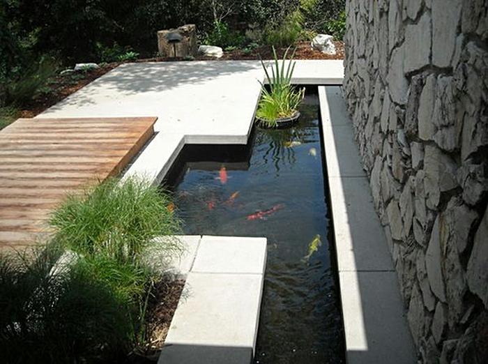 ein Teich voller goldenen Fischen ein Blumentopf, der segelt - moderne Gartengestaltung