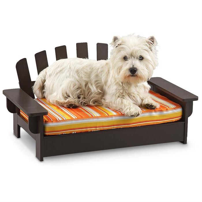 Holzbett für Haustiere, kleiner Pudel im bequemen Bett, Komfort und Ästhetik