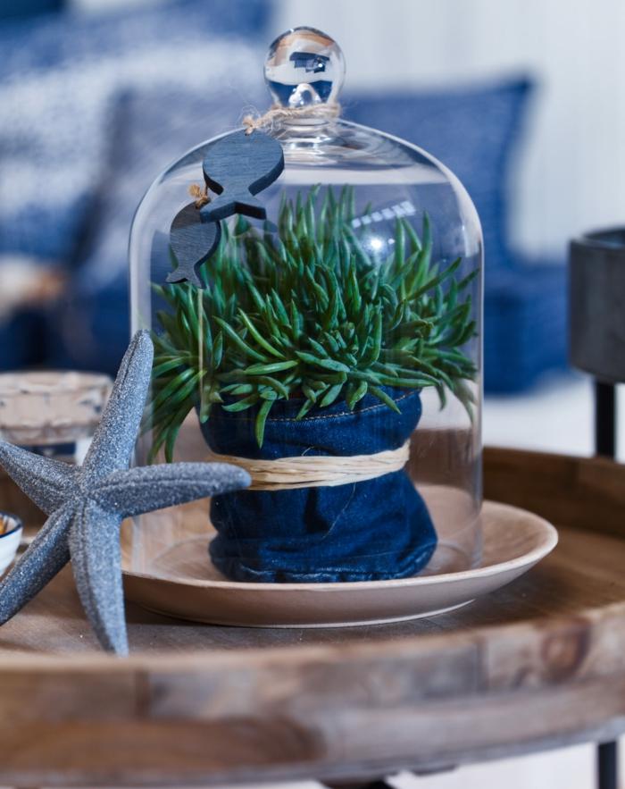 Maritime Deko Figuren, grüne Meerespflanze unter einem Deckel aus Glas, blauer Seestern, Tischdekoration maritim