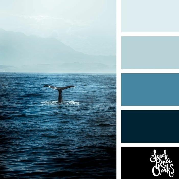 Maritime Farben kombinieren, verschieden blaue Nuancen, Bild vom Meer und einem Delfin, Collage von Farben