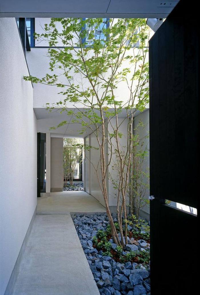 graue Steine, niedrige Bäume in einem Innenhof - puristischer Garten