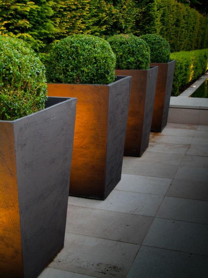 vier nebeneinander geordnete Blumentöpfe mit Pflanzen wie Kugeln - moderner Vorgarten