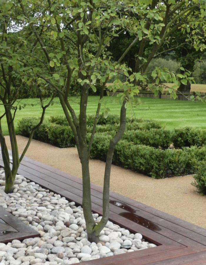 zwei Bäumen in Beeten mit weißen Steinen angelegt und eine Sitzbank - moderne Vorgärten