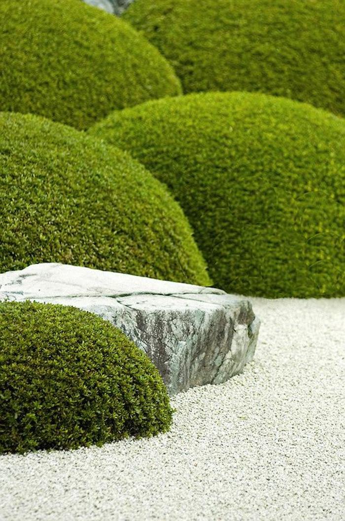 ein Steingarten mit Moos und Kies als Bodenbeläge - Gartengestaltung Beispiele