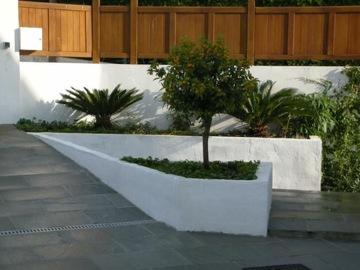 ein Baum im Mittelpunkt mit kleinen orange Früchten - moderner Vorgarten