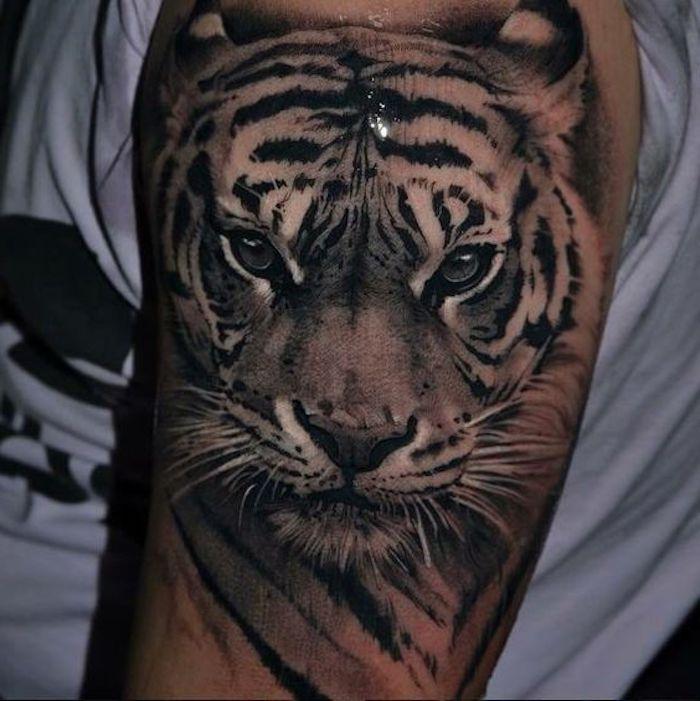 tiger tattoos, oberarm, oberarmtattoo, weißes t-shirt