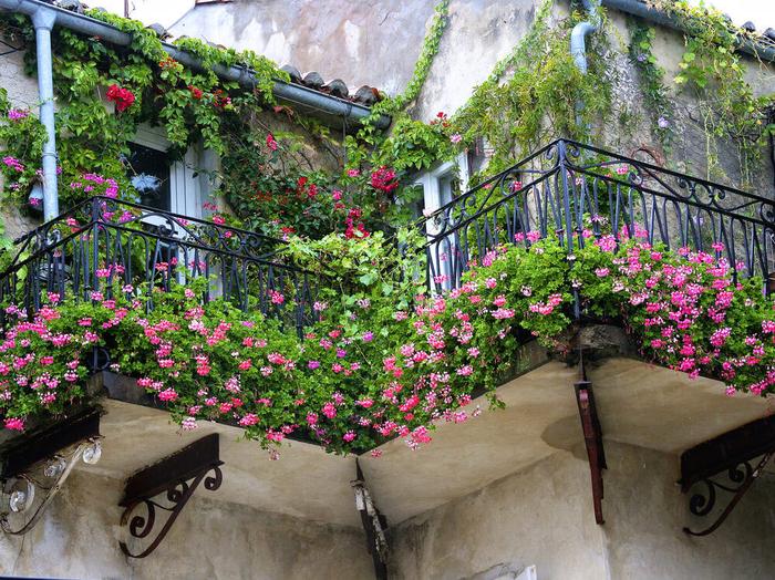 einen romantischen Look auf dem Balkon schaffen, viele Blumen überall, rosa Blüten
