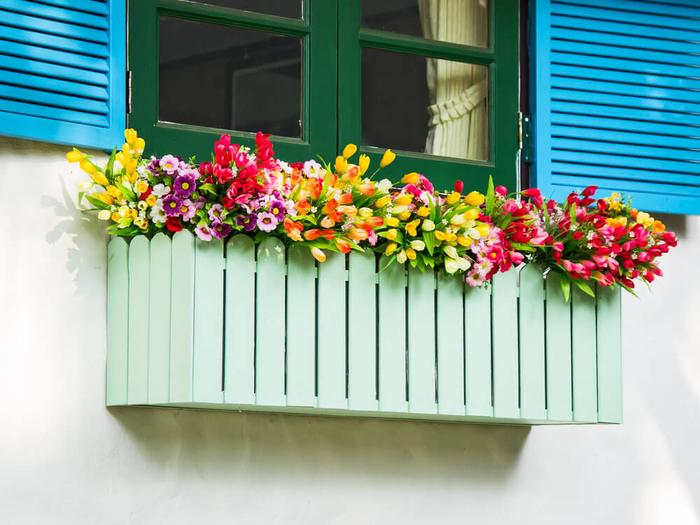 prachtvolle Frühlingsblumen, das Zuhause schön dekorieren, bunte und frische Pflanzen