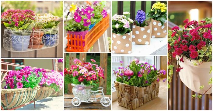 schöne Balkonpflanzen, kreative Ideen für Blumentöpfe, viele Blüten