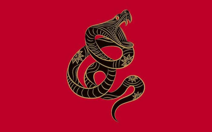 schwarze Schlange, Schlangenzeichnung, Goldfarbe, Schlange schlingen