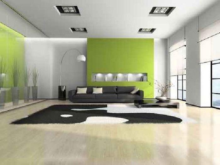 feng shui, pfanzen, teppich in schwarz und weiß, grüne wände, schwarzes sofa