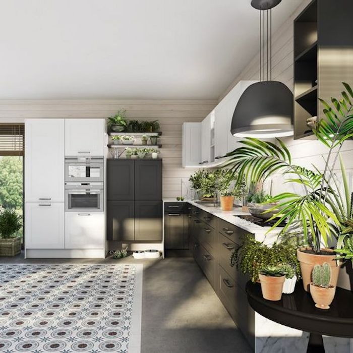 feng shui farben, pflanzen, küche in weiß, grau und grün, großes kühlschrank