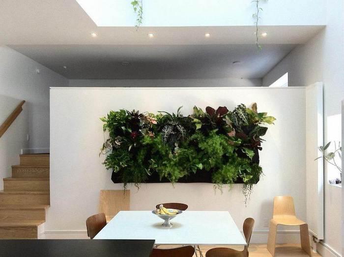 esszimmer, eckiger tisch, stühle, wand, pflanzen
