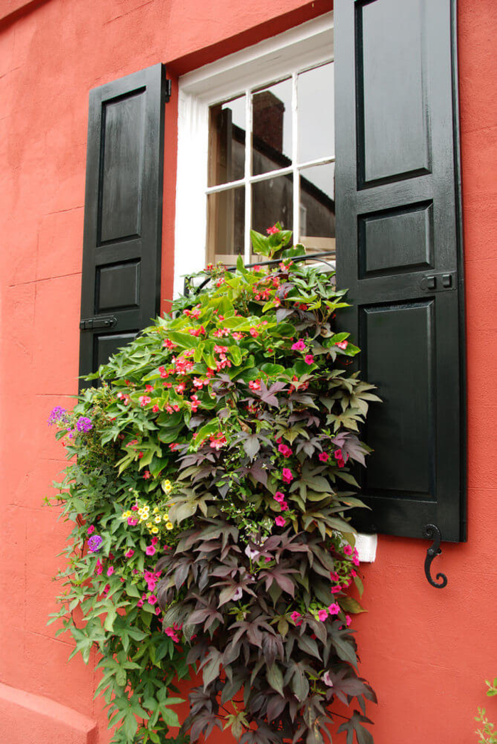 Blumen am Fenster, Ideen für romantischen Look in Ihrem Zuhause, Bepflanzen und Dekorieren