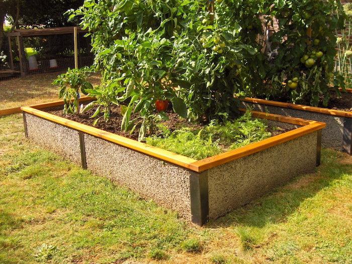 Hochbeet anlegen mit Tomaten, einige werden früher reif als die anderen