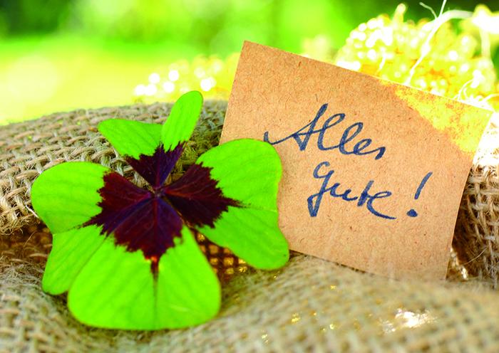 Alles Gute zum Geburtstag, Geburtstagskarte mit Kleeblatt, herzliche Glückwünsche