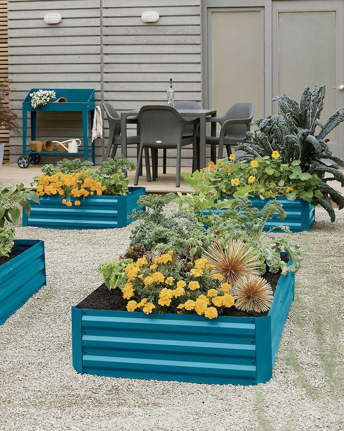 blaue Hochbeete befüllen mit vielen verschiedenen exotischen Pflanzen