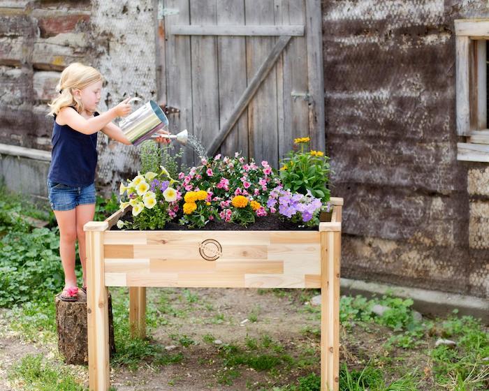 eine kleine Dame gießt dieses Hochbeet, Hochbeet bepflanzen mit Blumen
