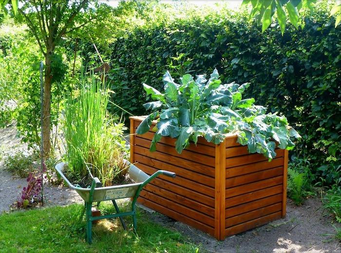 Schubkarre und Hochbeet nebeneinander voller Grün - Hochbeet selber bauen