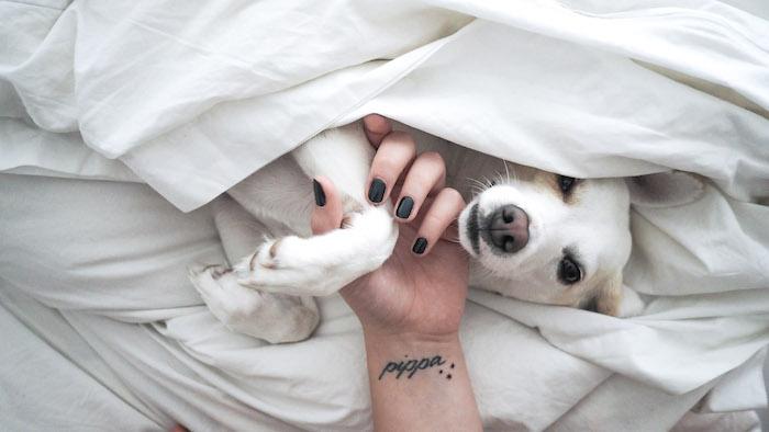 Kleines Tattoo am Handgelenk, sich den Namen des Haustiers tätowieren lassen, Tattoo in Schreibschrift