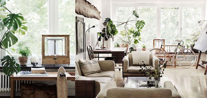 wohnzimmer pflanzen wenig licht. Black Bedroom Furniture Sets. Home Design Ideas