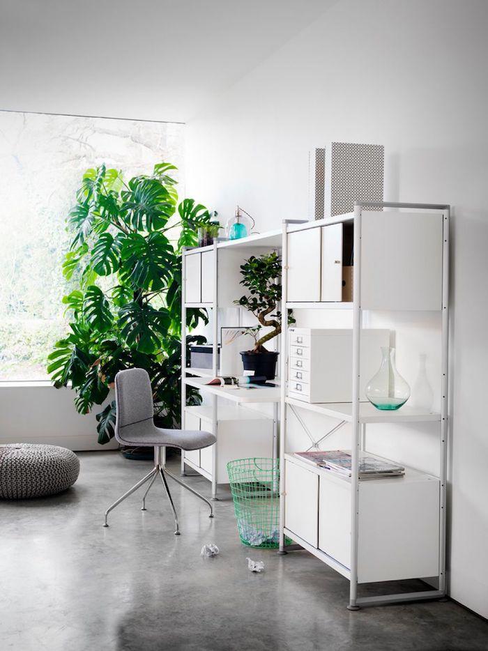 schönes weißes kompaktes Arbeitszimmer mit Monstera in der Ecke - Zimmerpflanzen für wenig Licht