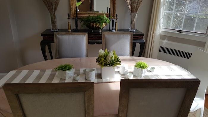 zwei symmetrisch gestellte Blumentöpfe mit Bubikopf - Zimmerpflanzen für wenig Licht