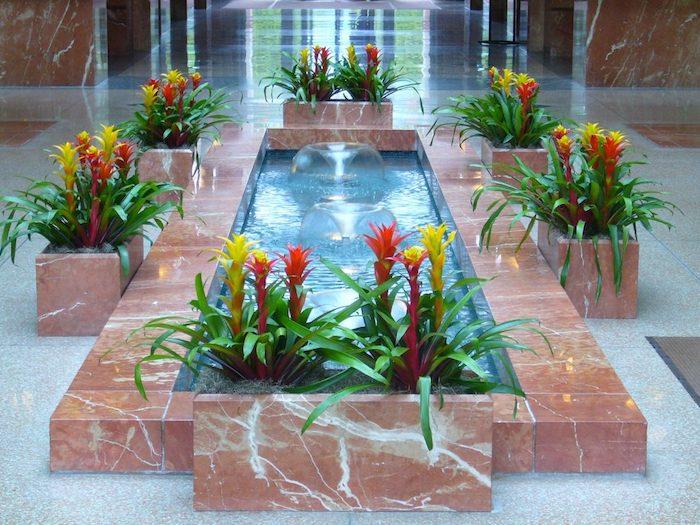 Pflanzen für dunkle Ecken gelbe und rote Blüten um einem inneren Brunnen