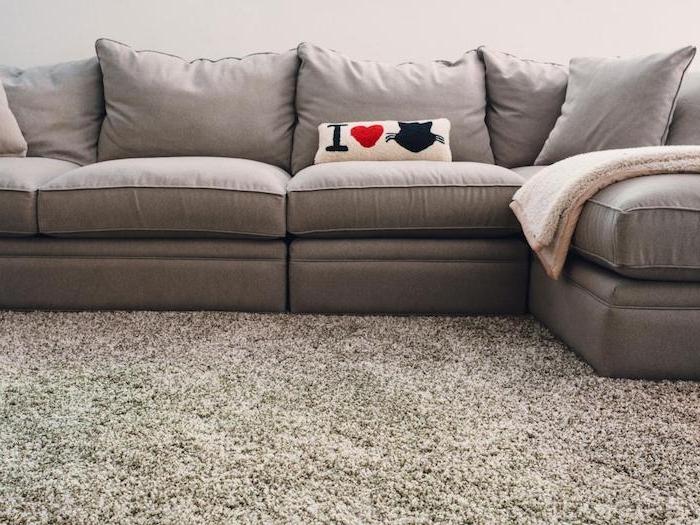 Ich liebe Katzen steht auf dem Kissen, ein graues Sofa grauer Teppich günstiger Bodenbelag