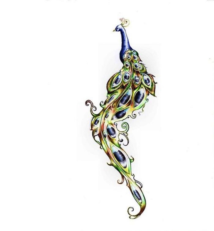 Pfau mit langer grün-blauer Federschwanz, Tattoo-Vorlage, blauer Pfau