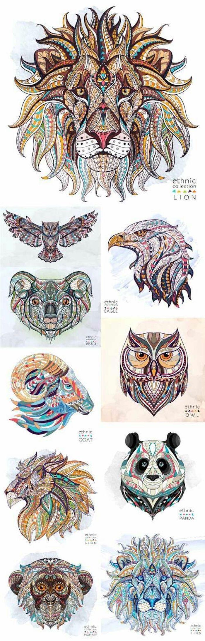 bunte Bilder: Löwe, Panda, Affe, Eule, Koala, Adler, Widder