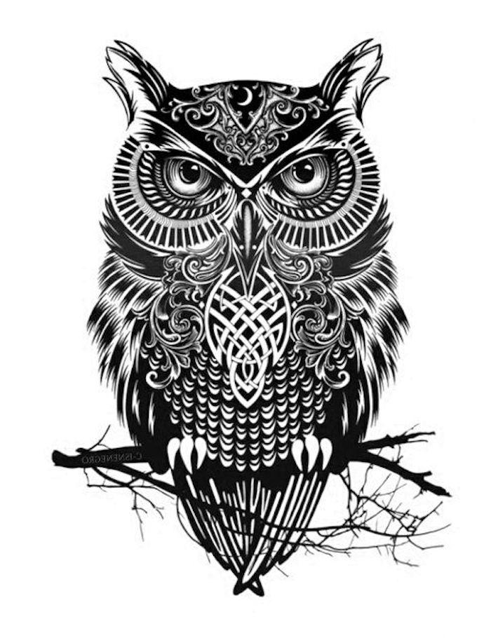 jetzt eine idee für einen schwarzen tattoo mit einer eule und einem schwarzen ast - owl tattoo